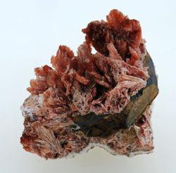 Picture of Inesite, (Kalahari Manganese Fields, South Africa)