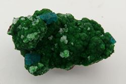 Picture of Conichalcite with Dioptase (Tsumeb Mine, Namibia)