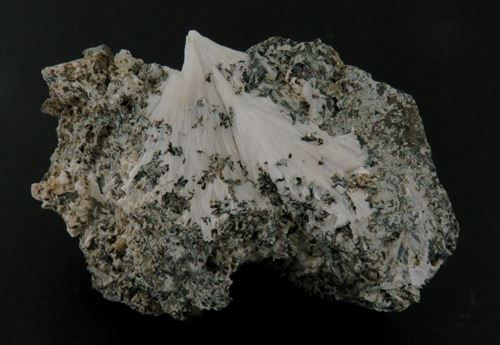 Picture of Pectolite & Titanite (Fort Lee, United States of America)
