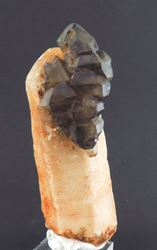 Picture of Smokey Quartz Sceptre (Neu Schwaben, Namibia)