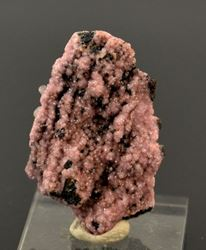 Picture of Rhodochrosite & Mangoancalcite (Kalahari Manganese Fields, South Africa)