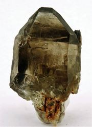 Picture of Quartz (Vioolsdrift, Northern Cape, South Africa)