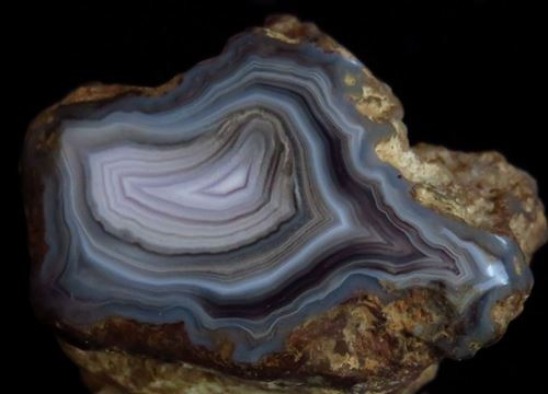 Picture of Agate (Queensland, Australia)