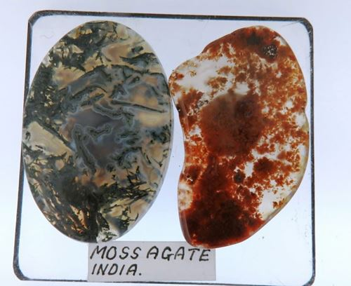 Picture of Moss Agate (India)