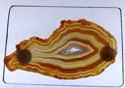 Picture of Agate Slice (Brazil)