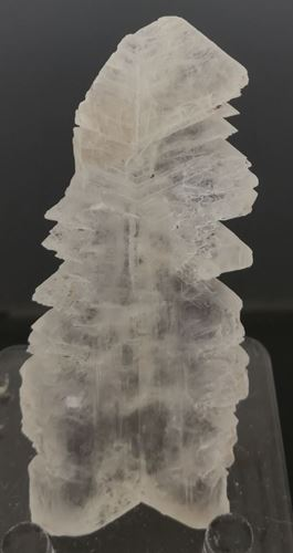 Picture of Gypsum var. Selenite (Mexico)