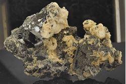 Picture of Sphalerite, Calcite, Pyrite etc. (Trepca, Kosovo)