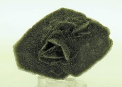 Picture of Desert Rose (Namibia)
