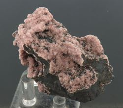 Picture of Rhodochrosite (South Africa)