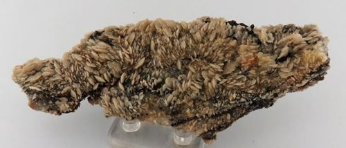 Picture of Gypsum  (Namibia)