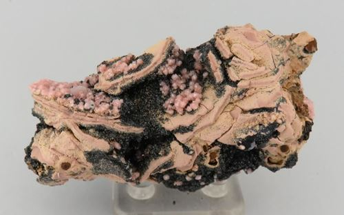 Picture of Hydroxyapophyllite on Manganite (Kalahari Manganese Fields, South Africa)