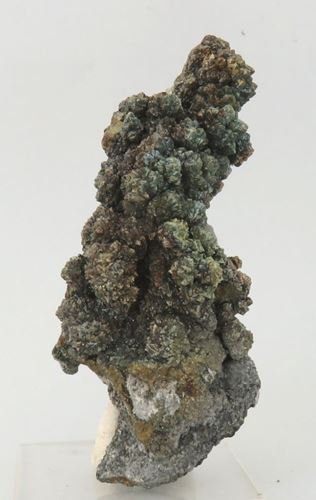 Picture of Marcasite (Rosh Pinah, Namibia)