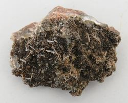 Picture of Endlichite (Mexico)