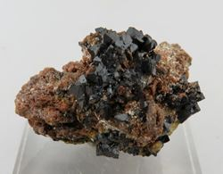 Picture of Hausmanite with Andradite ( Kalahari Manganese Fields, South Africa)