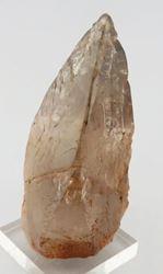 Picture of Quartz (Erongo, Namibia)